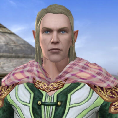 LOTRO Mantle of the Farmer's Table - Farmer's Faire Shoulders Cosmetic