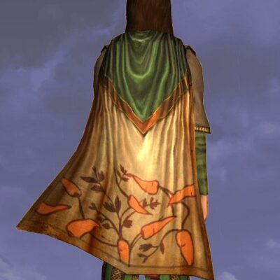 LOTRO Cloak of the Green Grocer - Farmers Faire Back Cosmetic