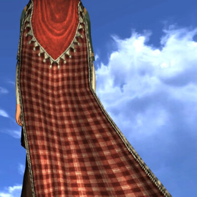 LOTRO Hooded Cloak of the Perfect Picnic - Back Cosmetic (Festivity Tokens)
