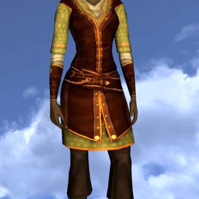 LOTRO Long-Sleeved Summer Tunic and Trousers - Farmers Faire Cosmetic