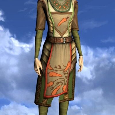 LOTRO Tunic of the Green Grocer - Female High Elf