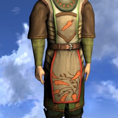 LOTRO Tunic of the Green Grocer - Male Elf