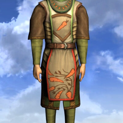 LOTRO Tunic of the Green Grocer - Male High Elf