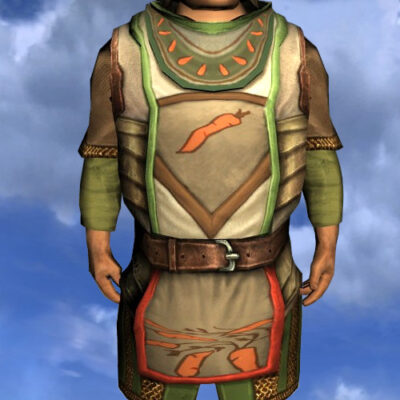 LOTRO Tunic of the Green Grocer - Male Hobbit