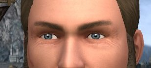 My attempt at blue grey eyes in LOTRO.