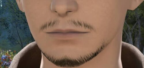 The closest match to my own facial hair in FFXIV