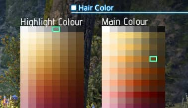 The hair colours I chose, a darkish brown with grey highlights.