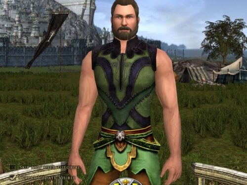 Behold! The Arms of an Average Man! (In LOTRO, at least!)
