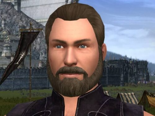 Only decent-sized beards permitted in LOTRO's Character Creation!
