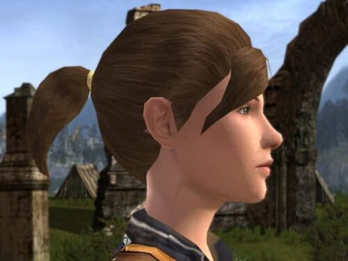 LOTRO Small Pony-Tail Hair Style for Female, Woman, Human thing.