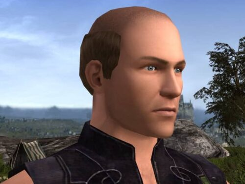 Bald, Ring of Hair style in LOTRO