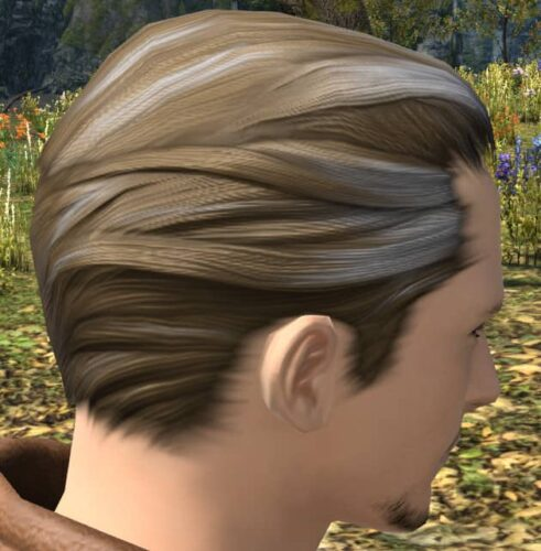 The closest male Hyur hairstyle I could find to thinning hair!